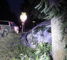 В аварии в городе Battle Ground пострадали мать и двое детей. Виновный арестован